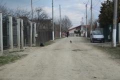 Strada_Crinului_1