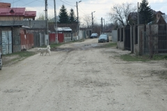 Strada_Freziei_1